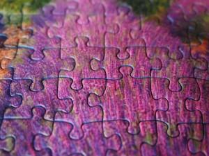 puzzle-collagene
